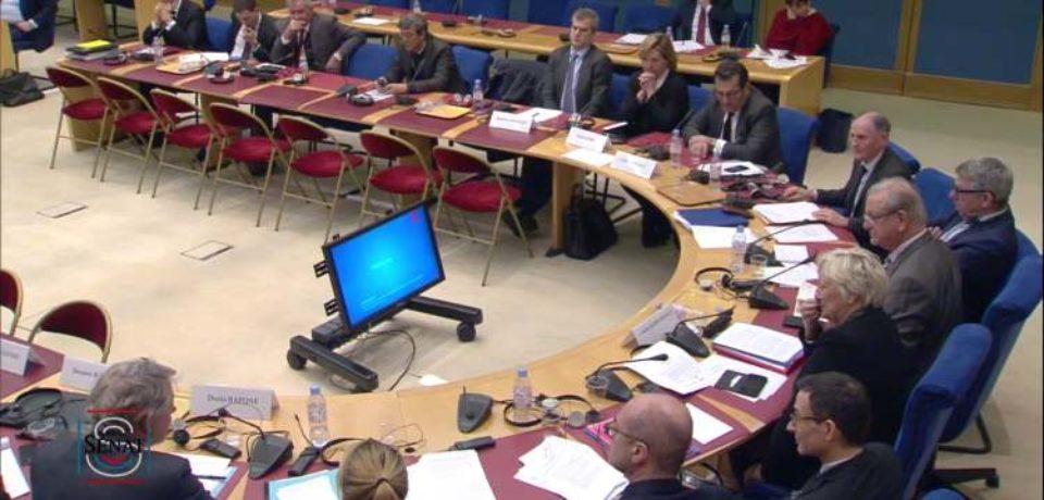 23 janvier 2019 – Commission de la Culture, de l'Éducation et de la Communication : Piratage des retransmissions sportives.