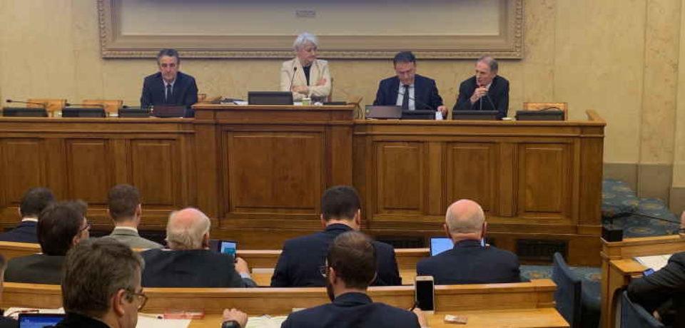 le 21 janvier 2020 : Audition du Parlement rural français par les parlementaires nationaux des groupes ruralités de l'Assemblée nationale et du Sénat.